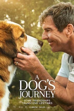 Suņa ceļojums (A Dog's Journey)